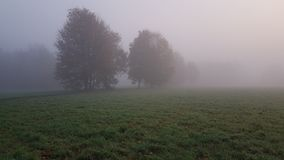 Fog, Mist, Morning, Atmosphere Royalty Free Stock Photography