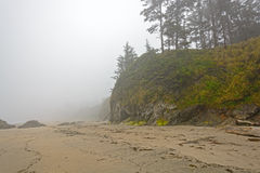 Fog and Mist on an Ocean Coastal Beach Stock Photos