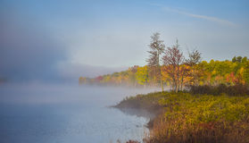 Fog and mist rises all around a wooded wetland marsh, enshrouding with fog, a colorful, waterfront, deciduous forest. Late-summer, early-autumn morning Royalty Free Stock Images