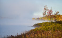 Fog and mist rises all around a wooded wetland marsh, enshrouding with fog, a colorful, waterfront, deciduous forest. Stock Photo