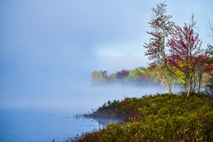 Fog and mist rises all around a wooded wetland marsh, enshrouding with fog, a colorful, waterfront, deciduous forest. Late-summer, early-autumn morning Stock Photos