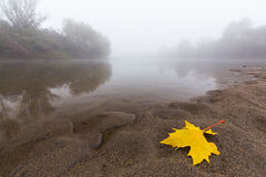 Fog and mist on a wild river Royalty Free Stock Photo