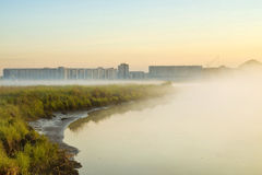Fog. Misty morning. Morning fog in the city. absorption Royalty Free Stock Images