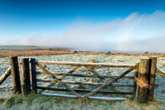 Fog on the Moor Stock Photography