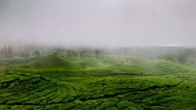 The Fog. Morning view from Bandung. So, enjoy this panorama Royalty Free Stock Photos