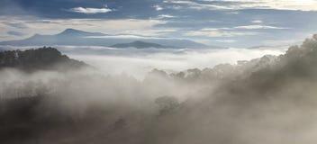 Fog in mountain, Da Lat city Stock Photography