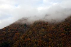 Fog mountain forest Royalty Free Stock Image