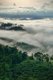 Fog mountain Royalty Free Stock Photography