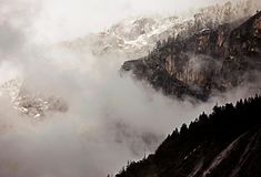 Fog at Yellowstone National Park in a winter afternoon. stock image
