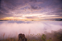 Fog in mountain before sunrise in thailand.  stock photos