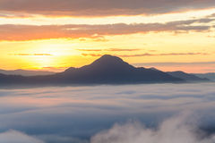 Fog on the mountain at sunset at phu thok chiang khan loei provi Royalty Free Stock Photography