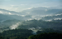 Fog on the mountain. In Thailand Stock Images