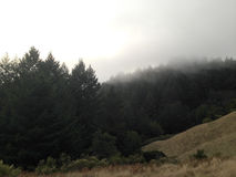 Fog on the mountain. USA Royalty Free Stock Images