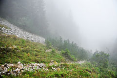 Fog on a mountain valley Royalty Free Stock Images