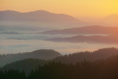 Fog in the mountain valley. At sunrise Royalty Free Stock Images