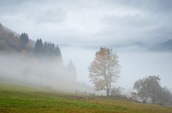 Fog in the mountain village Stock Image