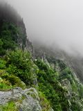 Fog on mountains. Creepy fogy mountains of Carpati Royalty Free Stock Image