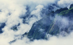 Fog in mountains Stock Image