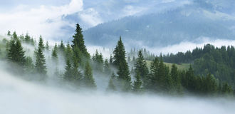 Fog in the mountains Royalty Free Stock Images