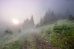 Fog in the mountains Royalty Free Stock Photography