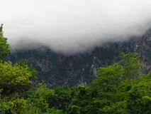 Fog in the mountains Royalty Free Stock Image