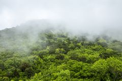 Fog in the mountains. Mystical landscape. royalty free stock photos