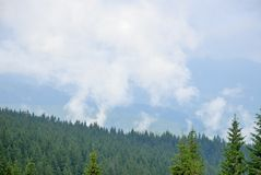Fog in mountains. After sunderstorm Royalty Free Stock Image