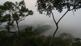 The fog moves in the forests of Laos. Andreev. The fog moves in the forests of Laos. Top view of a cloud covering the forest. TimeLapse. Landscape of the stock footage