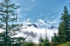 Free Fog Moving On Trees, Mountain Range Landscape On Madeira Island Royalty Free Stock Image - 213996376