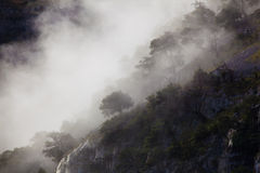Fog in the natural park of Collados del Ason Stock Photography