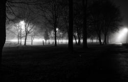 Fog in Night city Stock Photos