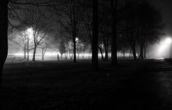 Fog in Night city. Night city fog on the road Stock Photos