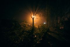 Fog night yard with bright light on background. royalty free stock image