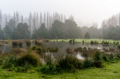 Fog over autumn lake Royalty Free Stock Photography