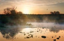 Fog over autumn river Royalty Free Stock Photos