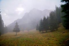 Fog over Bucegi Mountains. Beautiful foggy glade and Bucegi Mountains, Romanian Carpathians Stock Photo