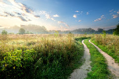 Fog over country road Royalty Free Stock Photography
