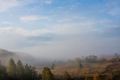 Fog over the forest early in the morning. Russia Stock Photos