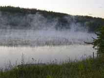 Fog over the forest lake. Royalty Free Stock Photos