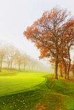 Fog over a golf course Royalty Free Stock Images