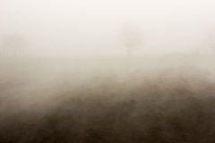 Fog over a ground Royalty Free Stock Image