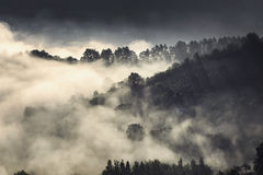 Fog over the hills of medieval Brasov. A foggy morning on the hills of Brasov, Transylvania, Romania. Autumn (fall), September 26th, 2016. The trees create Stock Image