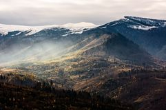 Fog over the hillside of mountain with snowy top. Stunning landscape in late autumn Stock Images