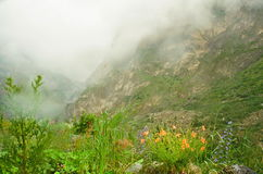 Fog over karmadon canyon Stock Photos