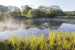 Fog over the lake an early summer morning Stock Images