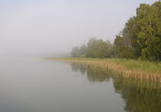 Fog over lake Royalty Free Stock Image