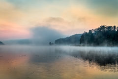 Fog over the lake at sunrise Stock Images