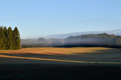 Fog over the meadow at dawn in Drawskie Lakeland (Poland) Stock Photo