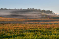 Fog over the meadow at dawn in Drawskie Lakeland (Poland) Royalty Free Stock Images