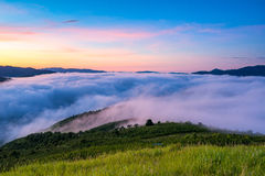 Fog over mountain and forest on sunrise Stock Photo